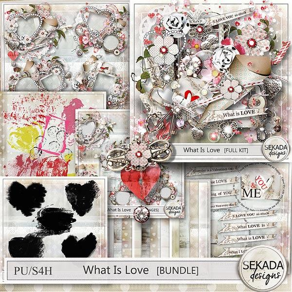 https://www.digitalscrapbookingstudio.com/community/uploads/monthly_2016_03/sekada_whatislove_bundle.jpg.9d9a45e5088159570f7eff52dd4f06f7.jpg