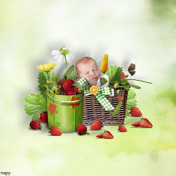 summerfruit15.jpg